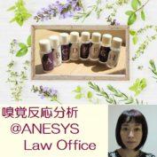 ANESYS法律事務所